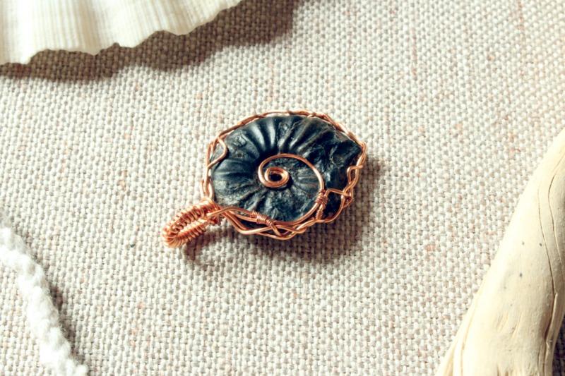 fossile-di-ammonite
